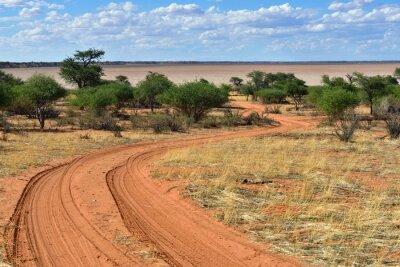 Plakat Pustynia Kalahari, Namibia