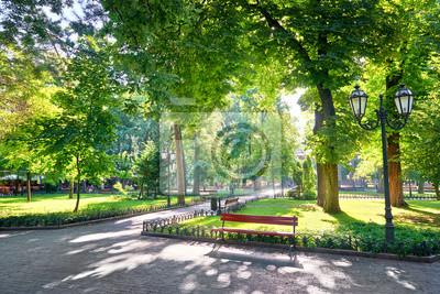 Plakat rano w parku miejskim, jasnym świetle słonecznym i cienie, sezon letni, piękny krajobraz
