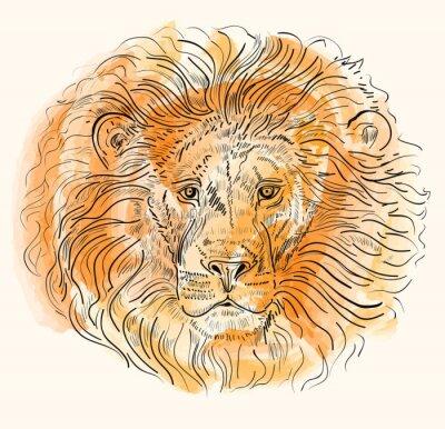 Plakat Ręcznie rysowane ilustracji wektorowych z głową lwa
