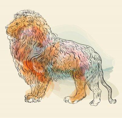 Plakat Ręcznie rysowane ilustracji wektorowych z lwem
