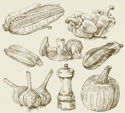 Plakat Ręcznie rysowane warzywa zestaw