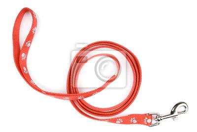 Plakat Red prowadzić psa smycz z nylonu lub wzoru druku łapy na białym tle