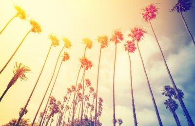 Plakat Retro stylizowane palmy o zachodzie słońca, Santa Monica, USA.