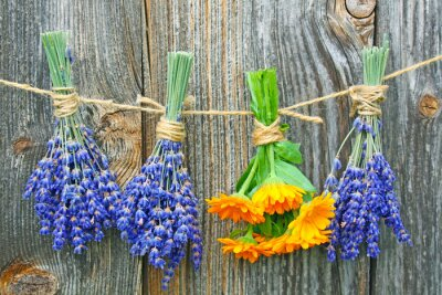 Plakat Ringelblume und lavendel
