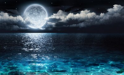 Plakat romantic and scenic panorama with full moon on sea to night
