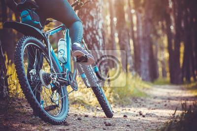 Plakat rowerzysta jazda rowerem górskim w lesie