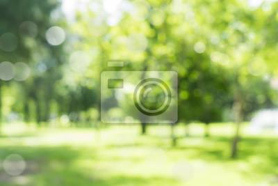 Plakat Rozmycie naturalne i jasne tło w parku.