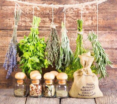 Plakat różne zioła świeże i suszone