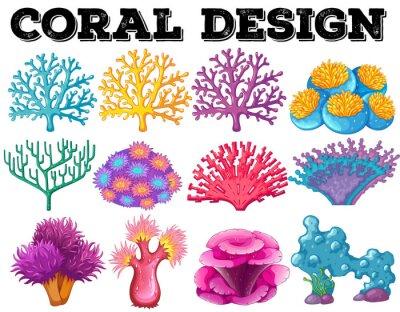 Plakat Różnego rodzaju konstrukcji koralowców