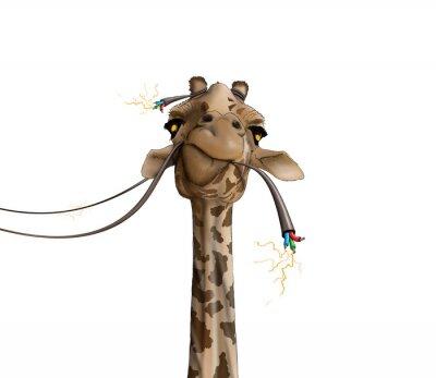 Plakat rysunek z żyrafa