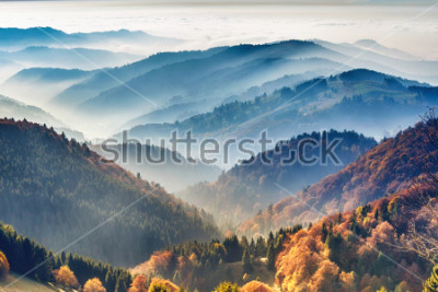Plakat Scenic mountain landscape. View on the Black Forest, Germany, covered in fog. Colorful travel background.