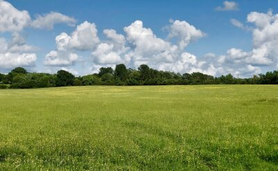 Plakat Scenic View Of Field Against Sky