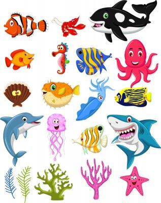 Plakat Sea Life kreskówka