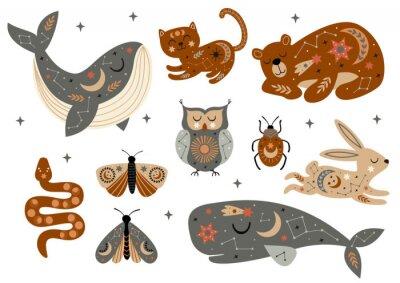 Plakat set of isolated celestial animals