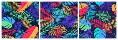 Plakat Set of seamless patterns with exotic colorful leaves of monstera, banana tree and palm branches, bright trendy vector tropical backgrounds