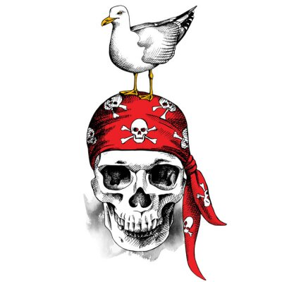 Skull in red pirate bandana and with seagull. Vector illustration.