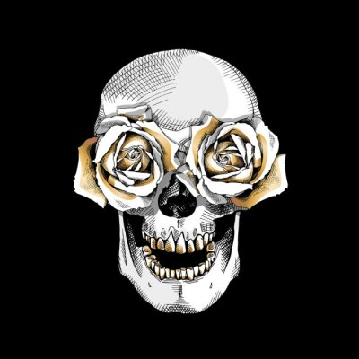 Skull with the eyes gold roses flowers. Vector illustration