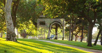 Plakat Słoneczny Park