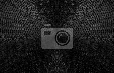 Snake skin background. Panoramic banner with copy space.