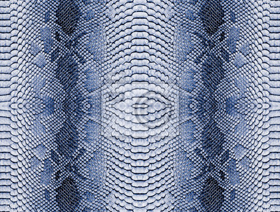 Snake skin background. Panoramic web banner with copy space.