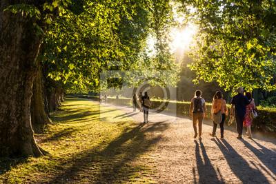 Plakat Spaziergänger im Park w der Abendsonne