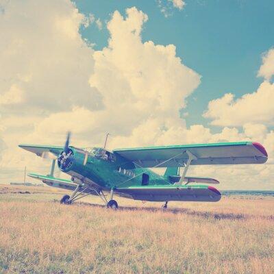 Plakat Stary samolot na zielonej trawie