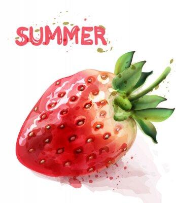 Plakat Strawberry isolated Vector watercolor. Fresh fruit summer seasonal cards