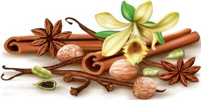 Plakat Suche aromatycznych przypraw