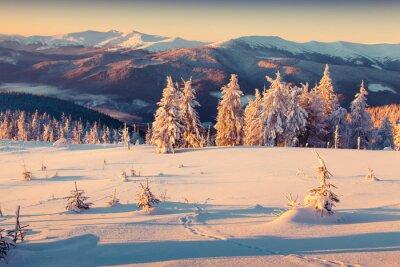 Plakat Sunny rano wschód słońca w górach zimą. Styl retro.