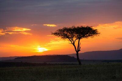 Plakat Sunset in the Serengeti National Park, Tanzania, Africa