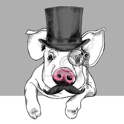 Świnia portret w meloniku iz monokl. ilustracji wektorowych.