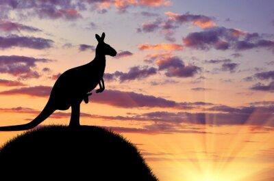 Plakat Sylwetka kangur z dzieckiem