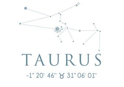 Plakat TAURUS