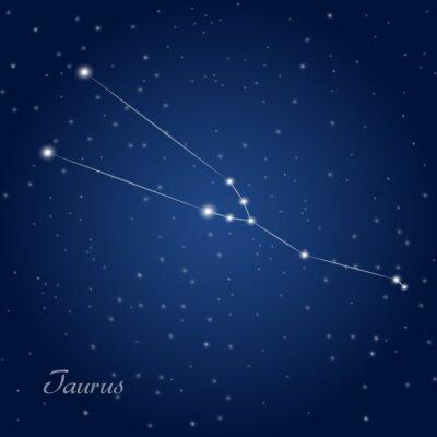 Plakat Taurus constellation zodiac sign at starry night sky