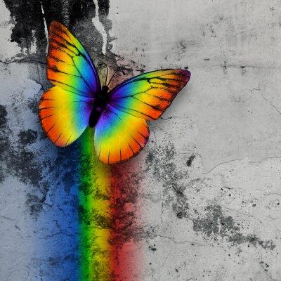 Plakat tęczowy motyl
