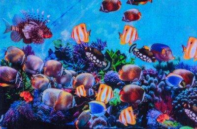 Plakat tekstury drukowania tkanin paski akwarium