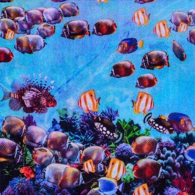 Plakat texture of print fabric striped aquarium