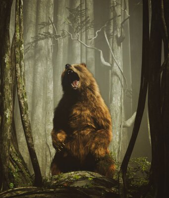 Plakat The forest's tales,Brown grizzly bear in magical forest,3d illustration