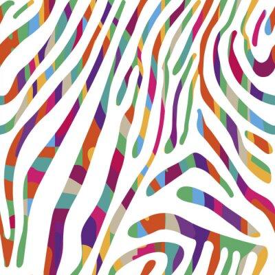 Plakat Tło z kolorowych Zebra skóry deseniu
