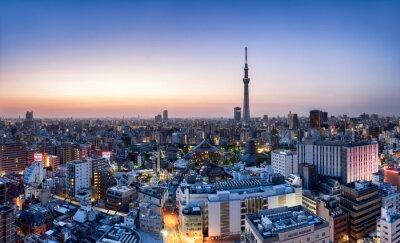 Plakat Tokio Skyline Skytree
