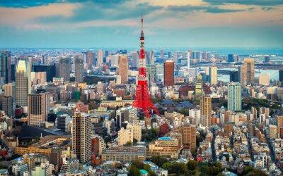 Plakat Tokio widok na miasto widoczne na horyzoncie