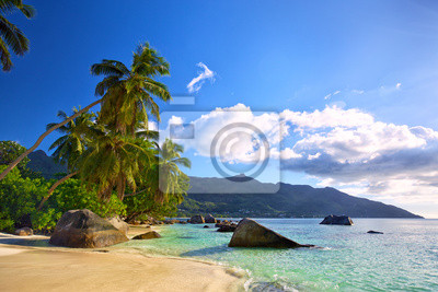 Plakat Tropical beach with palms and rocks in Mahe Island, Seychelles