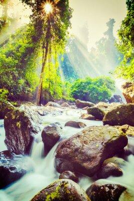 Plakat Tropikalna wodospad