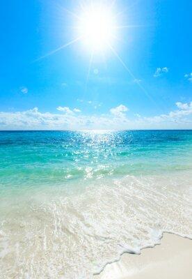 Plakat tropikalnego morza