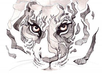 Plakat tygrys