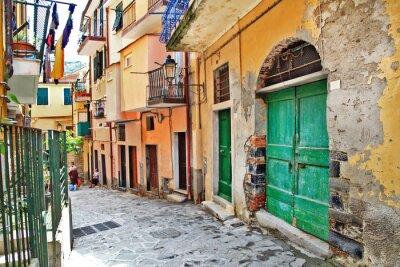 Plakat uroczą śródziemnomorską ulice, Cinque Terre, Włochy