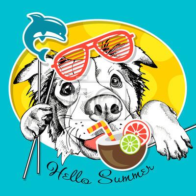 Uroczysty plakat z portretem pies Owczarek australijski z letnich rekwizytów Photo Booth. ilustracji wektorowych.