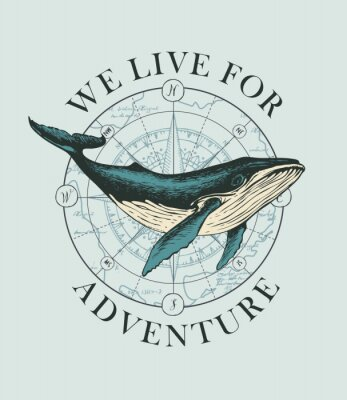 Plakat Vector banner with big hand-drawn whale on the background of wind rose and old map in retro style. Illustration on the theme of travel, adventure and discovery with words We live for adventure