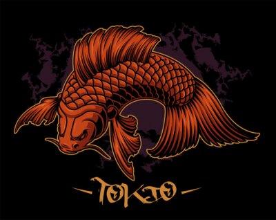 Vector illustration of a koi carp