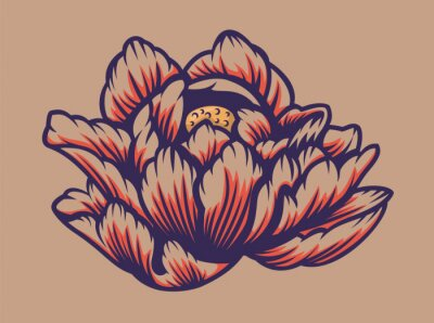 Vector illustration of a lotus flower.